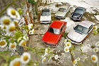 BMW 2000 tii, Ford 20 M XL 2300 S, Mercedes-Benz 230, NSU Ro 80, Opel Commodore 2500 S